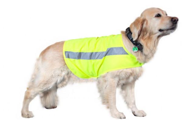 Hubertus Hunde Signal-Weste